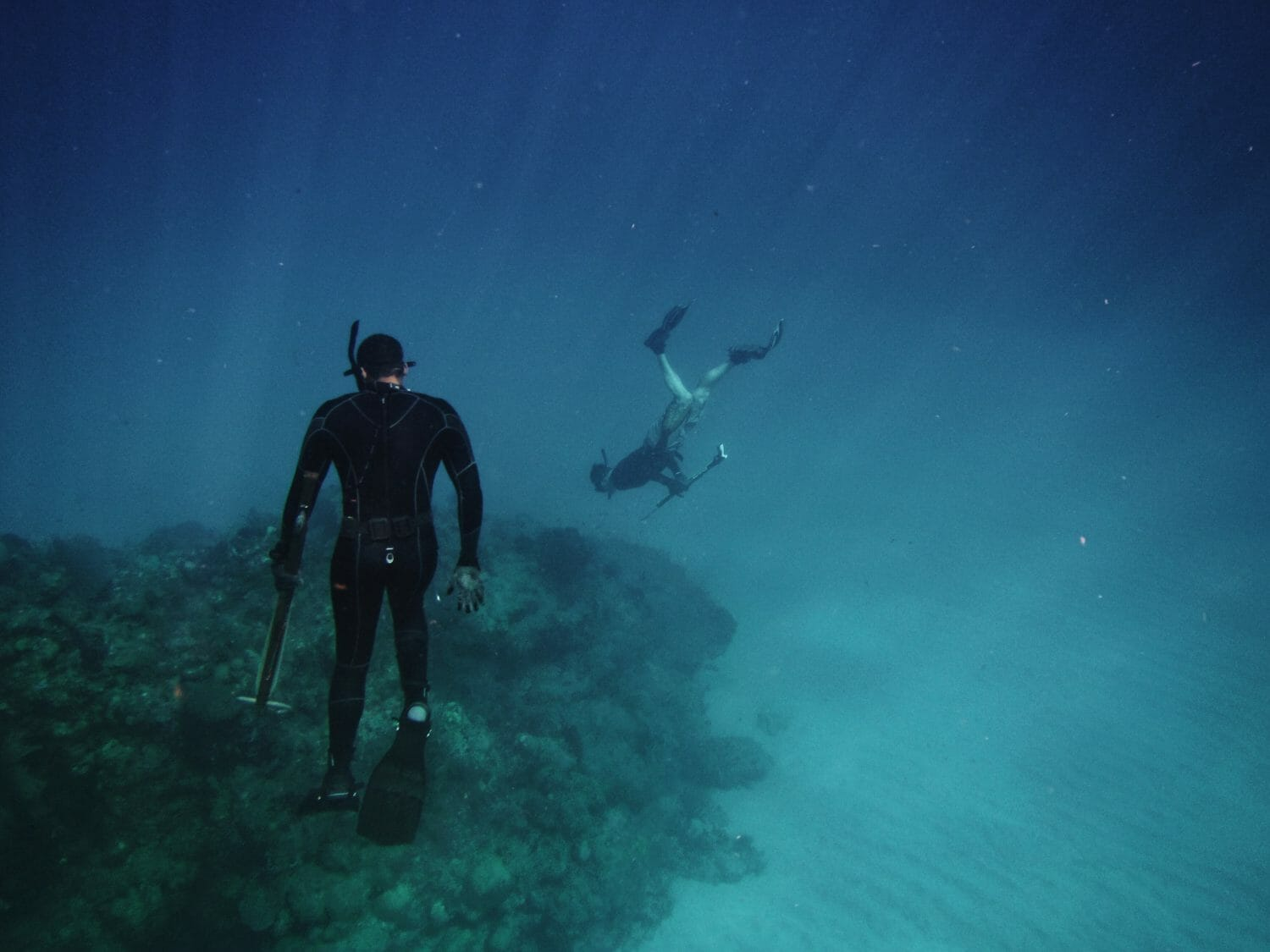 eLearning is Changing How Divers Certify