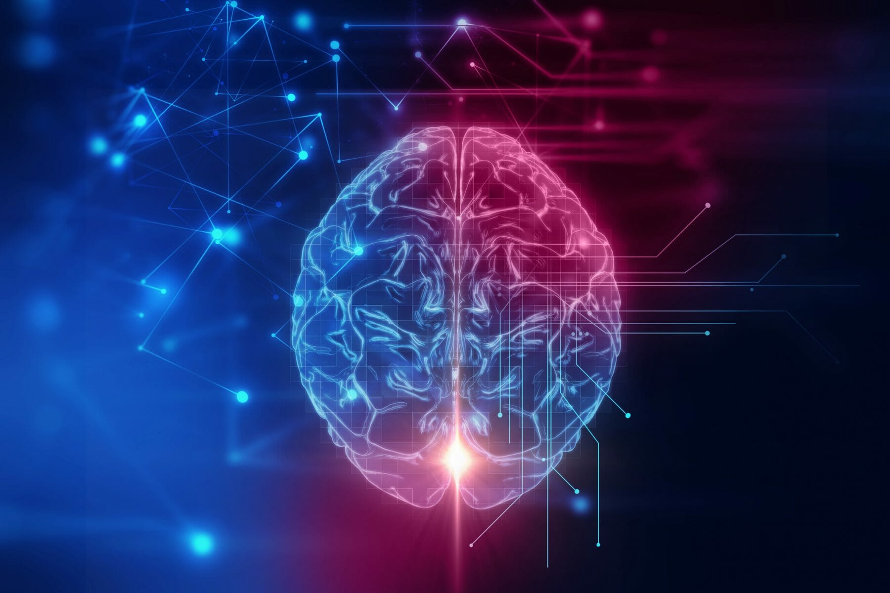Multimedia and cognitive theory