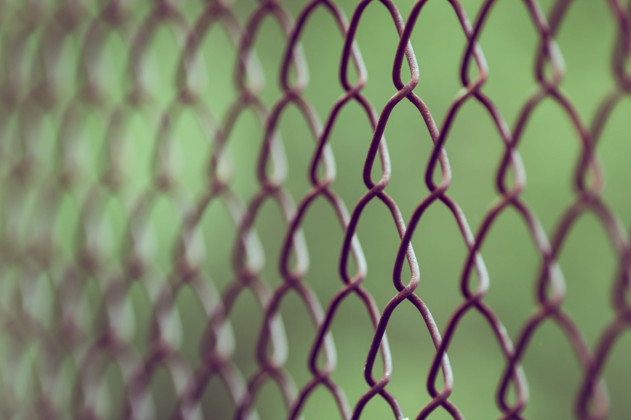 A selective focus shot of a chainlink fence.